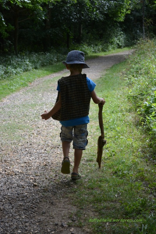 walk, a boy and his stick